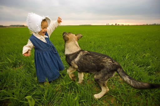 Tener mascotas es bueno para la salud